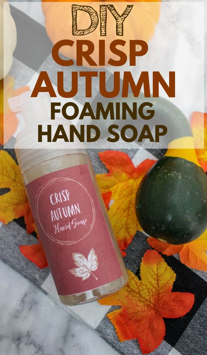 Make your own foaming hand soap with this easy recipe! It's much more affordable, takes very few ingredients, and can be completely customized! This is a beautiful crisp autumn scent! Grab free printable labels for your DIY foaming hand soap as well! #diy #foaminghandsoap #soaprecipe #diybeauty
