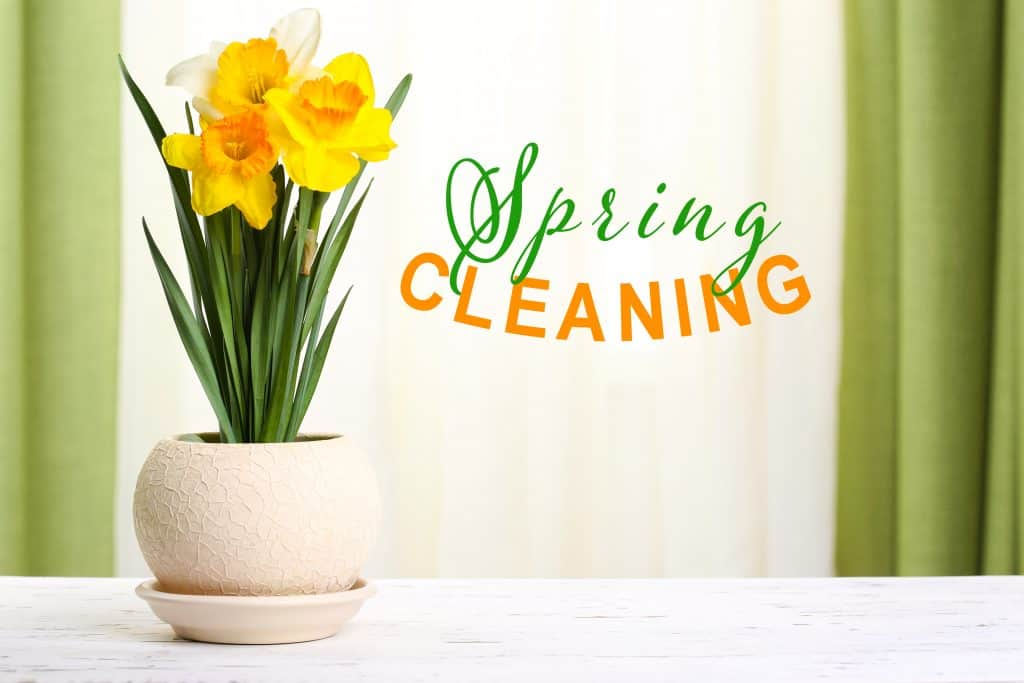 These spring cleaning tips are great ways to get the family involved in spring cleaning. It doesn't have to be stressful! Do the spring clean up in a whole new way!