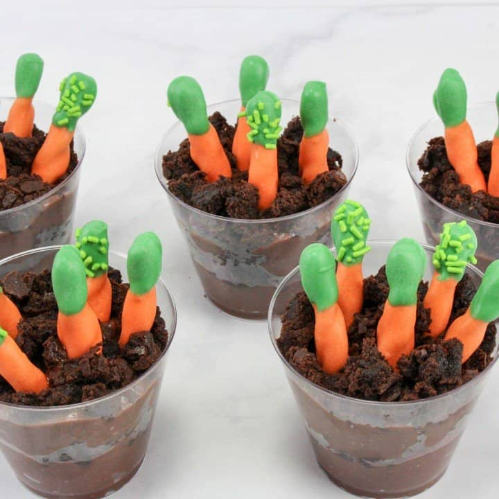 Carrot Patch Pudding Cups